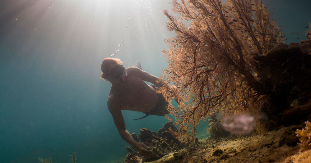 Mergulho livre se diferencia do mergulho autônomo pela falta de equipamentos