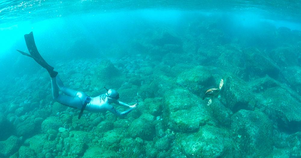 Karol Meyer, brasileira recordista em mergulho em apneia