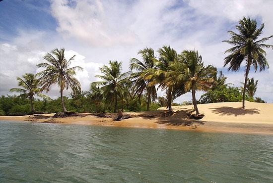 Guarapari é um dos melhores lugares para mergulhar no Brasil