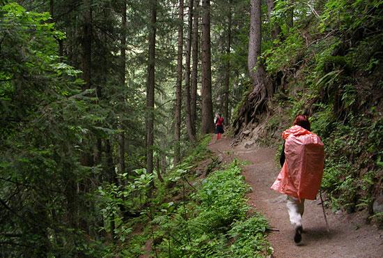 Trekking te deixa em contato com a natureza