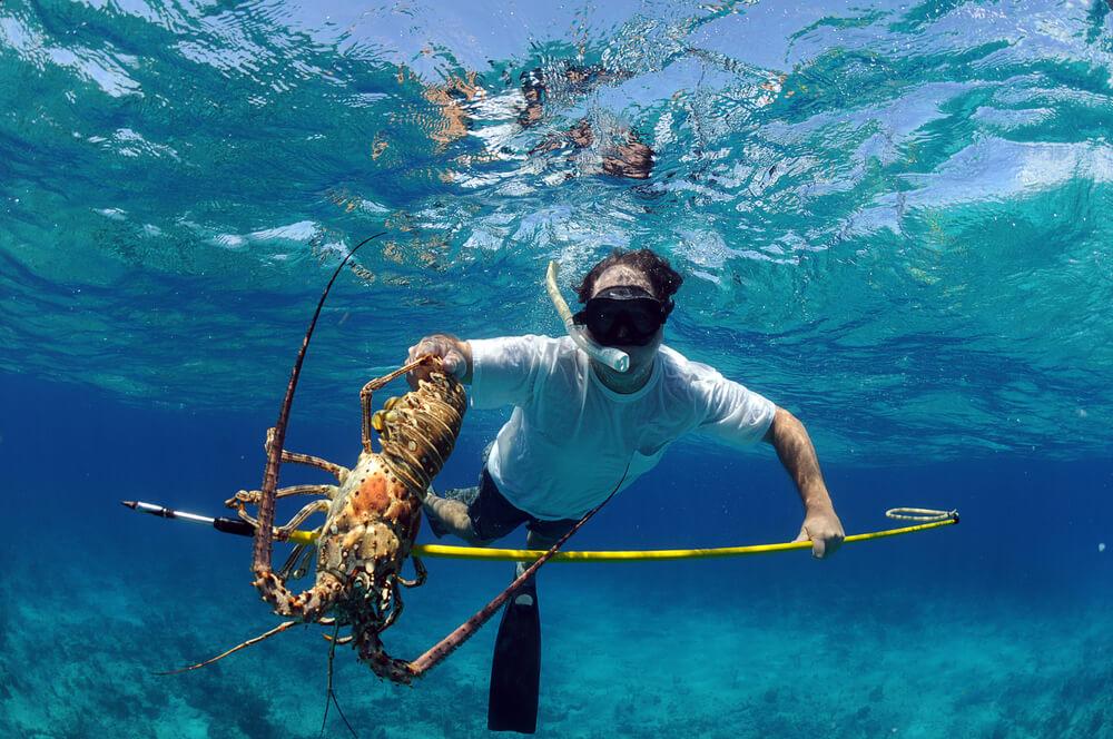 Homem praticando pesca submarina