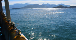 Saiba quais são os melhores pontos de mergulho em Ilha Grande