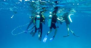 Entenda a diferença entre mergulho profissional e mergulho recreativo
