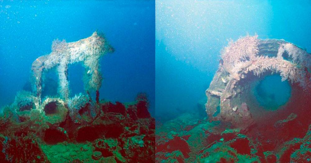 Naufrágio do Vapor Califórnia é um dos principais pontos de mergulho em Ilha Grande