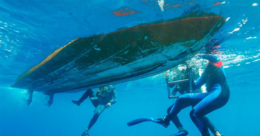 Mergulhar em Galápagos com condições de água diferentes