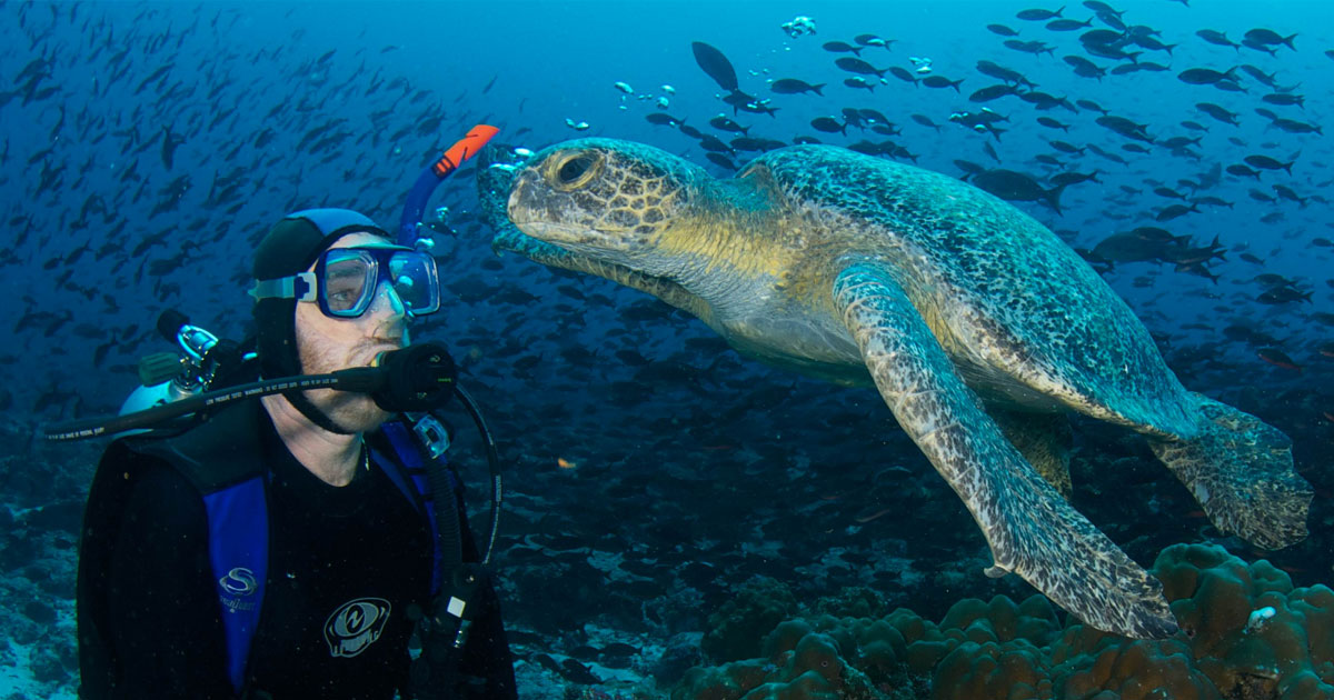 4 motivos para Mergulhar em Galápagos