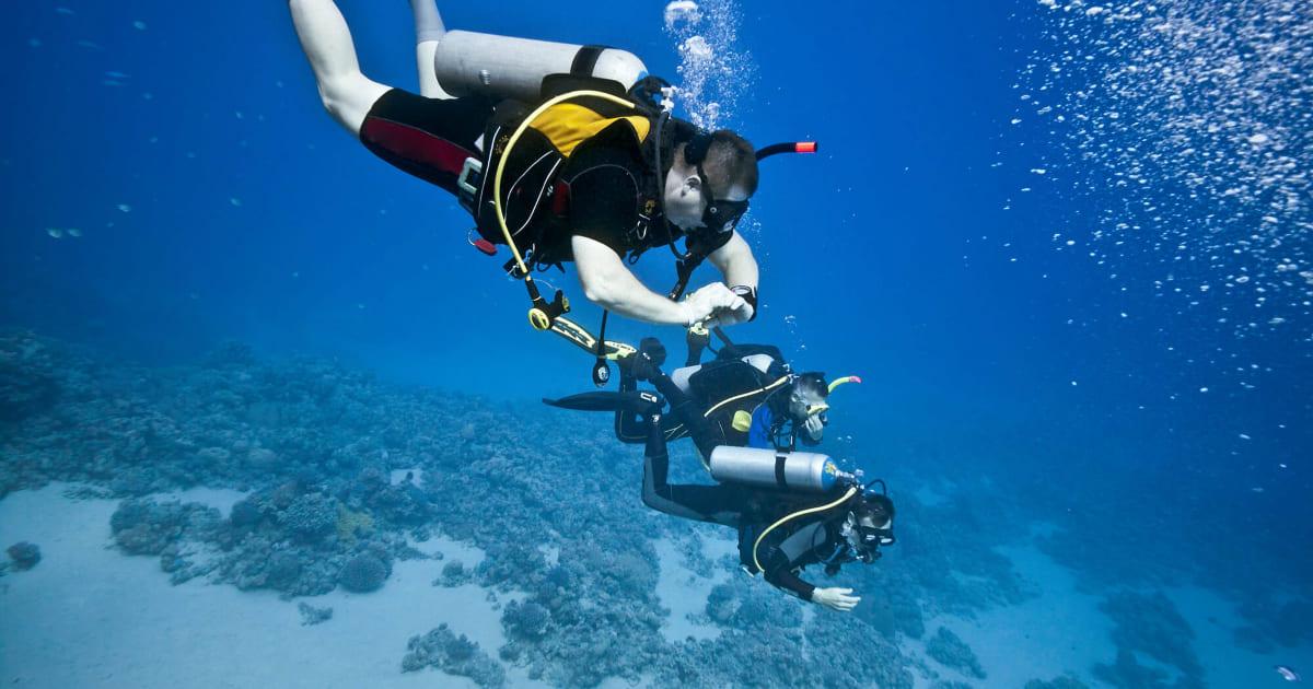 Conheça os principais cursos de mergulho da PADI
