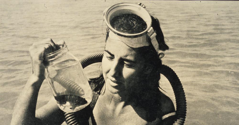 Eugenie Clark foi uma bióloga marinha e mergulhadora importantíssima por seu trabalho com tubarões