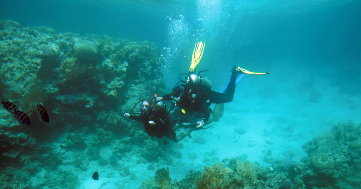 O que faz um instrutor de mergulho? Conheça melhor a profissão