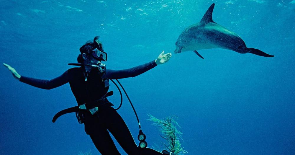 Sylvia Earle é uma grande bióloga marinha e mergulhadora