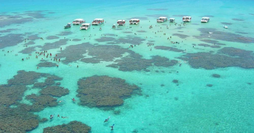 A Costa dos Corais do Alagoas é uma das maiores barreiras de corais do mundo