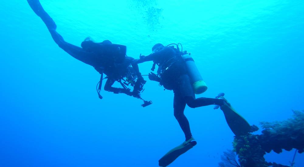 Divemaster é um monitor que auxilia o instrutor de mergulho