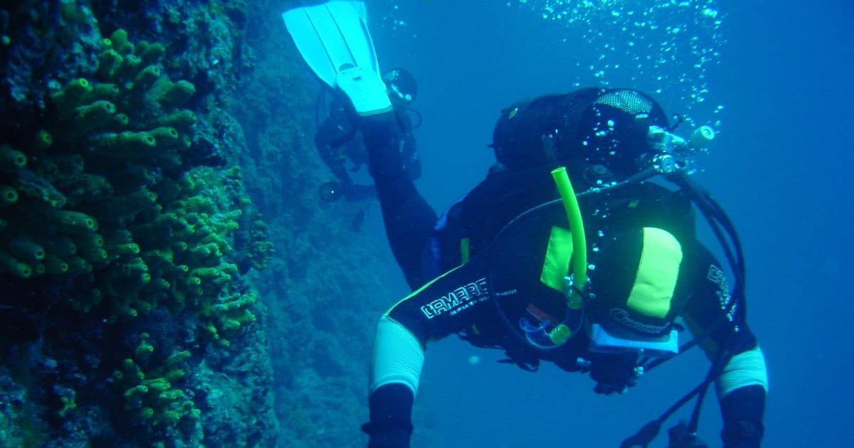 Aprenda o que é fisiologia do mergulho