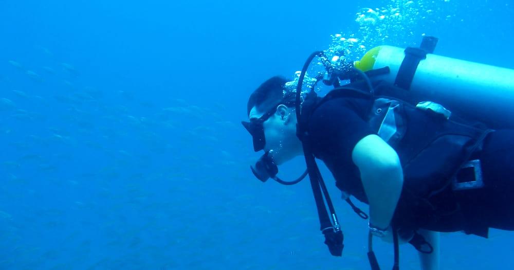 Fisiologia do mergulho: mergulhar faz bem