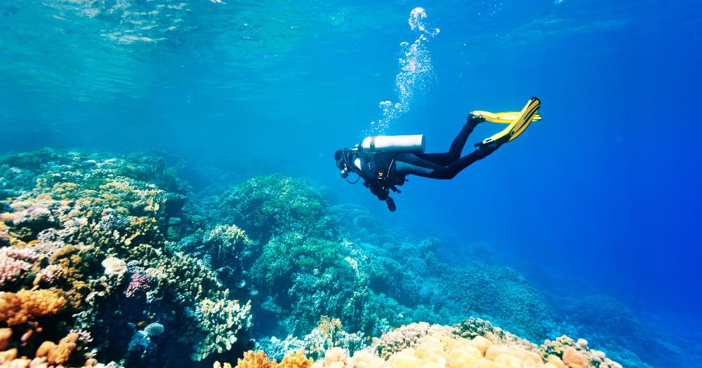 Fazer um curso de mergulho faz bem para saúde