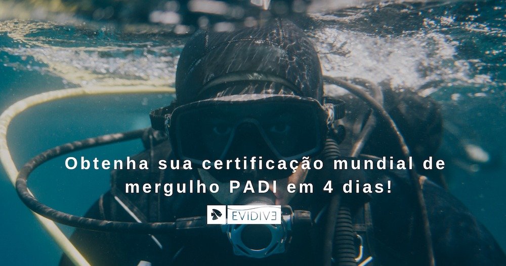 Obtenha sua certificação mundial de mergulho PADI em 4 dias!