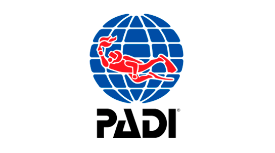Curso · PADI Scuba Diver